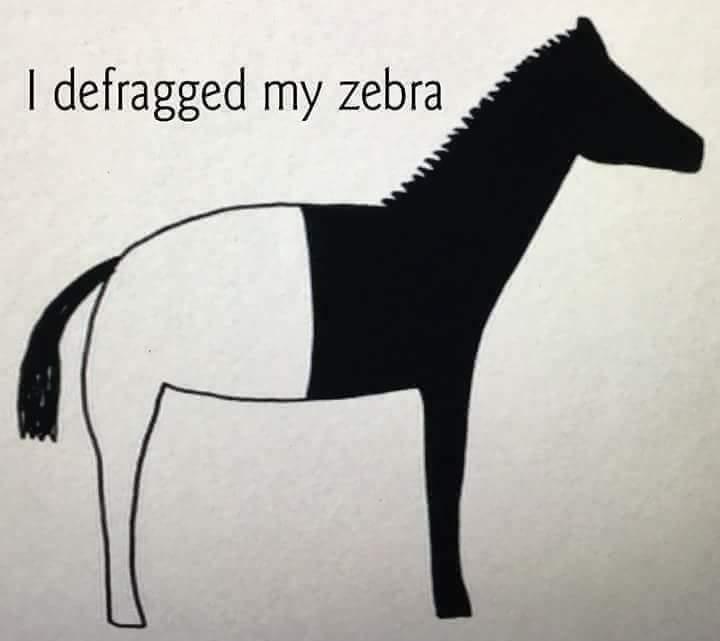 defragged zebra